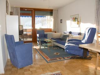 Salzburger Land Maria Alm Hinterthal apartment, 85 - Kaprun vacation rentals