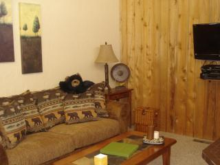 In the Heart of Pagosa - Equipped with everything! - Southwest Colorado vacation rentals