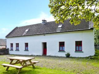 LOUGH GRANEY COTTAGE, woodburner, en-suite facilities, rural retreat, in Caher, Ref. 24965 - Terryglass vacation rentals
