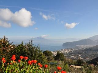 SPECIAL OFFERS SUMMER Casa Gaia S - Campania vacation rentals