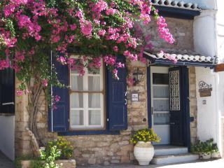 To Spitaki: Main Building - Galaxidi vacation rentals