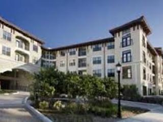 2 BR Apt. Near MD Anderson - Houston vacation rentals
