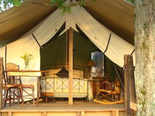 Glamping at Campbell Farm -Private -Mountain Views - Fort Hill vacation rentals