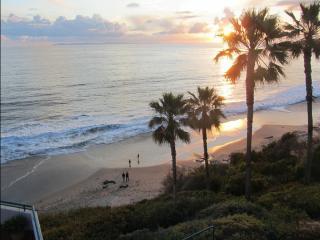 LAGUNA BEACH !  OCEANFRONT APT!  DOWNTOWN! - Laguna Beach vacation rentals