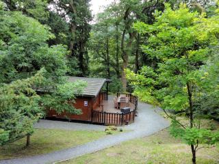 Blelham Tarn (Luxury Log Cabin) - Ambleside vacation rentals