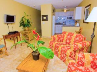 Large Studio- Sapphire Village-Free in Unit Wifi - Image 1 - East End - rentals