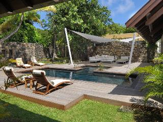 Stunning and modern villa with a private pool! - Pointe Aux Piments vacation rentals