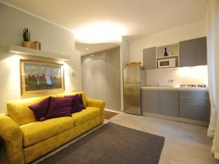 Elegant Studio XIX century building -  City center - Turin vacation rentals