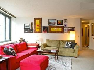 Downtown High Rise Room over River next to Navy Pier - Chicago vacation rentals
