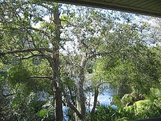 Wild Pines - Bonita Bay E-204 - Bonita Springs vacation rentals