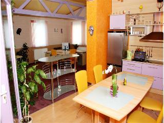guest house LT kaunas - Kaunas vacation rentals
