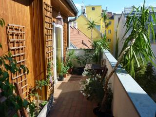 Vienna - Bright & spacious rooftop apartment - Vienna vacation rentals