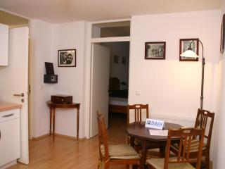 Romantic apartment in Munich - Munich vacation rentals