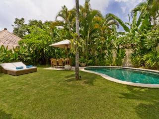 Cozy & homy 3Br villa + pool 10 min SEMINYAK - Kerobokan vacation rentals