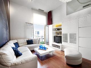 B330 ODYSSEY LUXURY PLAZA CATALUNYA - Barcelona vacation rentals