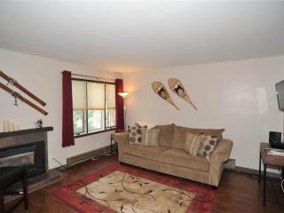 Asgard Haus 201 - Breckenridge vacation rentals