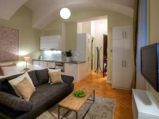 Courtyard Studio Apartment - Prague vacation rentals