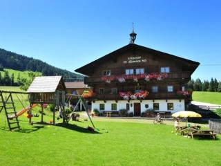 LLAG Luxury Vacation Apartment in Hopfgarten im Brixental - 538 sqft, comfortable, beautiful, quiet… - Söll vacation rentals