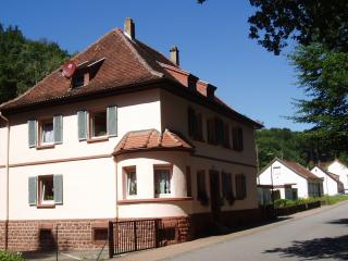 Holiday Flat - Bad Bergzabern vacation rentals