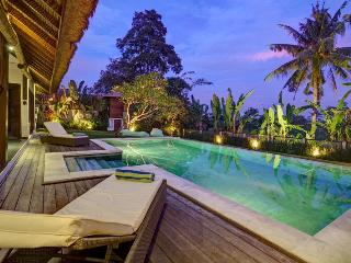 Villa with amazing Rice fields view - Buwit vacation rentals