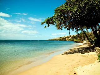 Kanai A Nalu #311  Direct Oceanfront with GREAT Oceanviews 2/2 Sleeps 4. - Wailuku vacation rentals