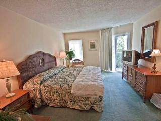 Great Ocean View Condo on the Beach - Southern Georgia vacation rentals
