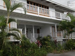 Kona Walk to Beach Spectacular Estate 6 Bed Pool - Kailua-Kona vacation rentals
