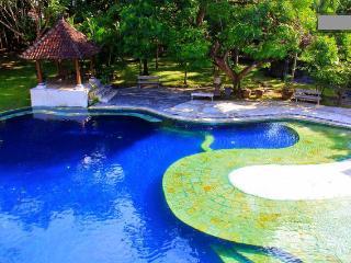 Villa Zoo - Kuta, Bali - Kuta vacation rentals