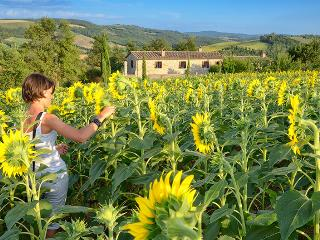 Family friendly holiday house with pool - apt4 - Umbria vacation rentals