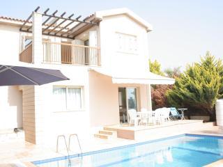 Villa Cygnus in Ayia Thekla - Liopetri vacation rentals