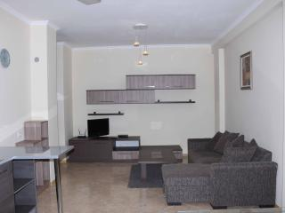 Luxury 2 Bedroom Apartment In Marjanishvili Str - Tbilisi vacation rentals