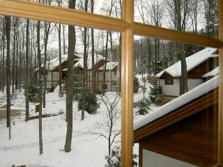 Disciples Village @ Boyne Mountain - Michigan vacation rentals