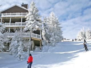Stemwinder - 9 - Snowshoe vacation rentals