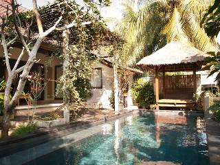 Private Villa Nyoman Bisma - Ubud vacation rentals