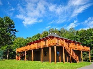 Spectacular log home! - Oakland vacation rentals