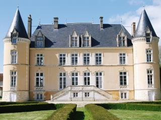Fairy tale Château in national park - Mortagne-au-Perche vacation rentals