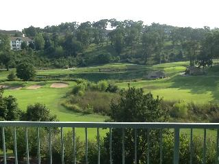 Condo close to strip, Wonderful Golfview - Branson vacation rentals