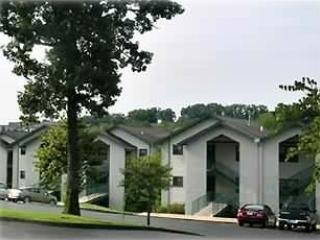 Condo in the heart of Branson * Walk to Strip - Branson vacation rentals