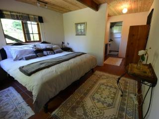 Cozy Cabin - Hogsback vacation rentals