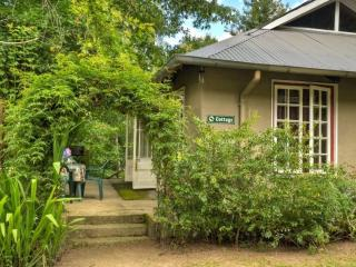Romantic studio-cottage - Hogsback vacation rentals