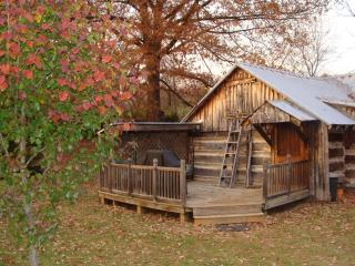 Homestead Cabin - Natural Bridge vacation rentals