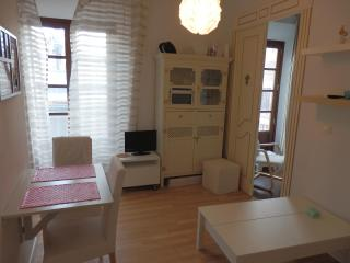 Cozy Apartment in the Heart of Malaga!! - Malaga vacation rentals