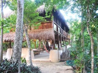 Akumal Jungle Cabin with Private Cenotes - Akumal vacation rentals