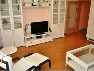 Gorgeous apartment near the lake - Czech Republic vacation rentals
