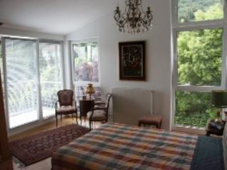 LLAG Luxury Vacation Apartment in Hofheim - 689 sqft, high-class, quiet, central (# 4280) - Hesse vacation rentals