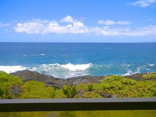 Whale House in Hilo, Hawaii - Keaau vacation rentals