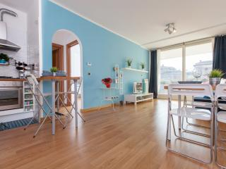 Porta Portese Blue Terrace Sunny Wifi A/C - Rome vacation rentals