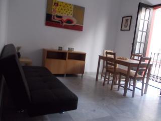 Sevillian house in the Alameda de Hércules - Seville vacation rentals