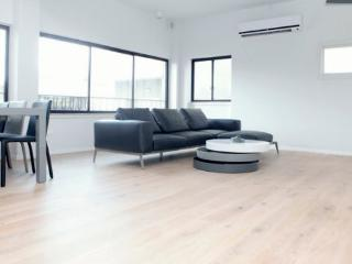 This Luxury 3 beds 2 bath apartment!!! - Tel Aviv vacation rentals