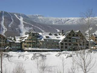 Stowe Mt. Lodge Unit 346 - Waterbury vacation rentals
